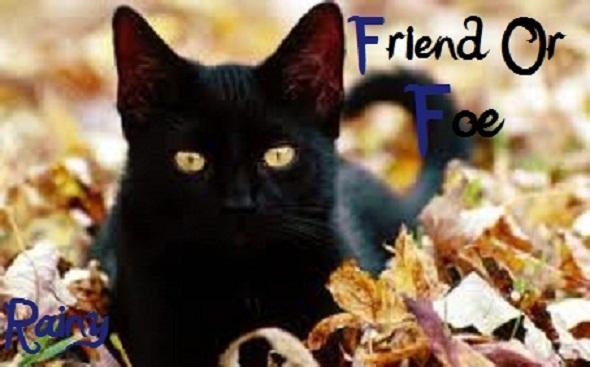 Friend_or_Foe.jpg