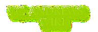 V.C. Andrews Wiki