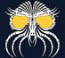 Voynich Wiki