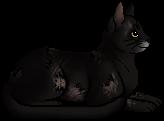 Crowfur.elder.png