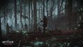 Tw3 e3 2014 screenshot - Nilfgaardian soldiers marching through the forest.jpg