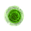 Tw3 mutagen green.png