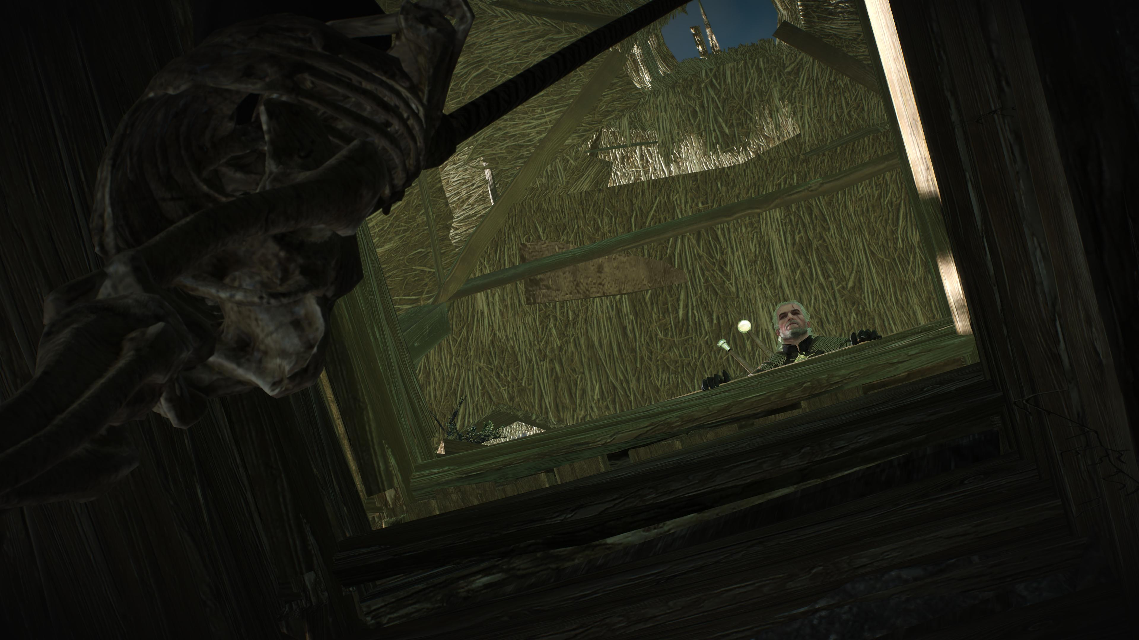 Tw3 screenshot down the well.jpg