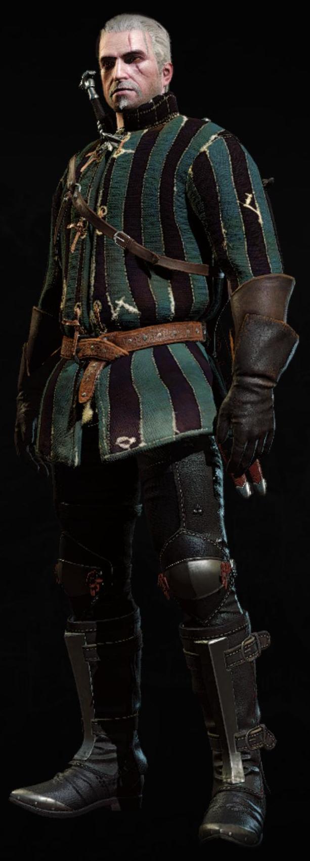 Tw3 armor cidarian gambeson.png