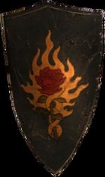 a steel Order shield