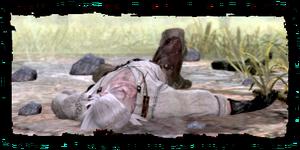 Geralt, unconscious