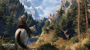 Tw3 coming home - way to kaer morhen.jpg