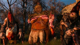 Ladies of the Wood (quest) - The Official Witcher Wiki