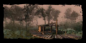 Landing in the Swamp