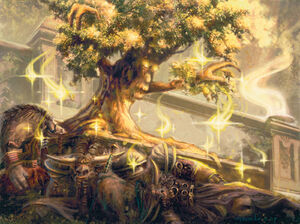 Incarnation: Tree of Life - Wowpedia - Your wiki guide to the ...