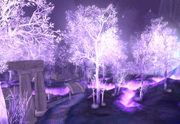 Crystalsong Forest.jpg