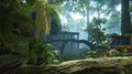 Rainforesintrowater.jpg