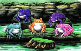 Frog group.png