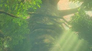 BotW The Great Deku Tree.png